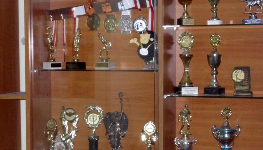 Dyplomy, statuetki, medale